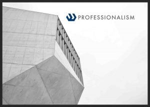 Professionalism - Professional Engineering Services